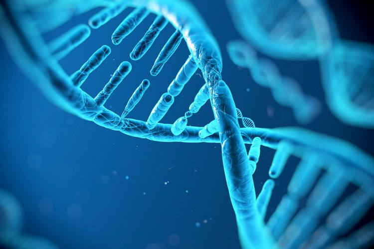 Microsoft планирует запустить «облачное» хранилище данных на ДНК к 2020 году