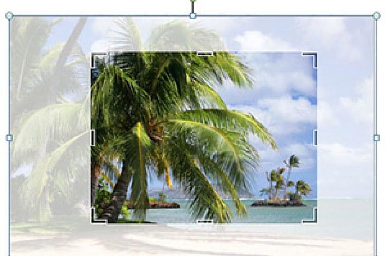 Усовершенствованные средства редактирования изображений позволяют быстро заменить рисунки, сохранив макет страницы