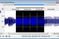 Sound Forge Audio Studio 10. Пользовательский выбор сетки