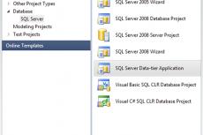 Microsoft Visual Studio Premium 2010. Разработка баз данных