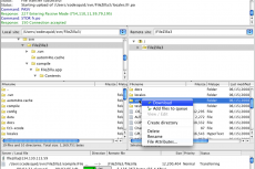 Главное окно FileZilla 3 на Mac OS X 10.5