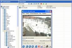 Окно программы DigitalRing Monocle в режиме просмотра записей