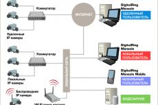 Схема применения программы DigitalRing Monocle