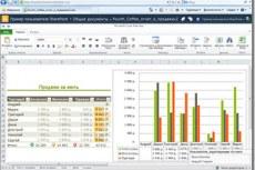 Microsoft Office Excel 2010. Приложение Excel Web App позволяет работать над книгой совместно с другими пользователями через Интернет