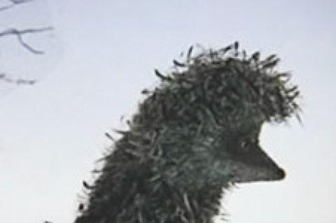 Аватар пользователя evg3n