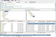 Главное окно FileZilla 3 на Linux