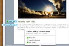 Excel Web App: Доступ к файлам Excel практически с любого компьютера.
