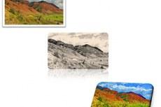 Microsoft Office Word 2010. Новые и улучшенные средства редактирования изображений позволяют довести до совершенства каждый рисунок в документе