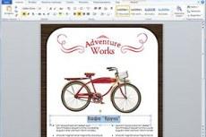 Microsоft Office Professional 2010. Профессиональный. Быстрое и оригинальное выражение идей