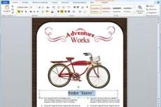 Microsoft Office Home and Business 2010. ыстрое и оригинальное выражение идей